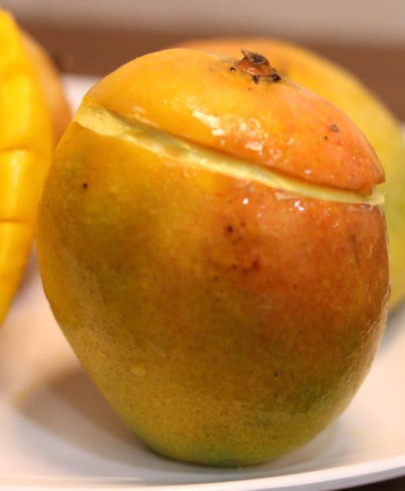 Mango Ice Cream in Shell