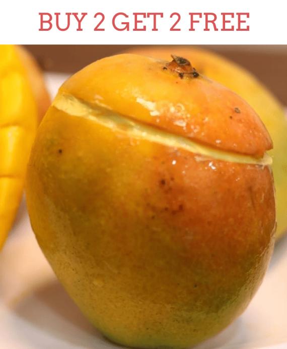 Biteskart Natural Mango Ice cream